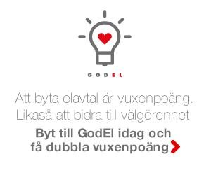 Vuxenpoang.se samarbetar med GodEl som skänker all vinst till välgörenhet